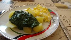 Spinat-kochen-mit-willi